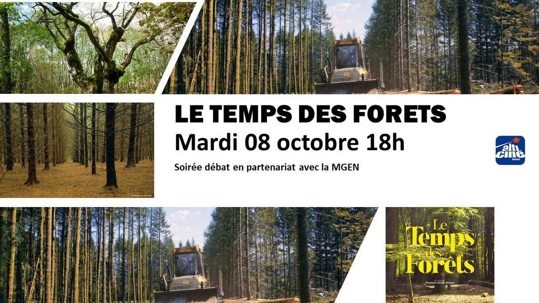 Photo du film Le Temps des forêts
